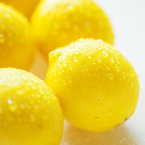 Phytofrance Lemon [レモン] - 画像2