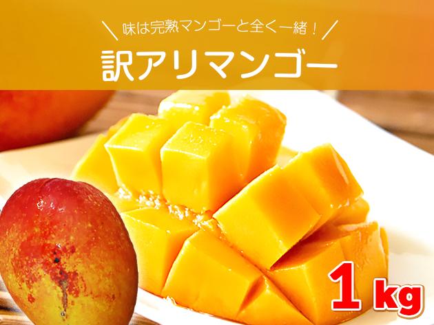 【訳アリ・ご自宅用】完熟マンゴー 約1キロ 沖縄県産