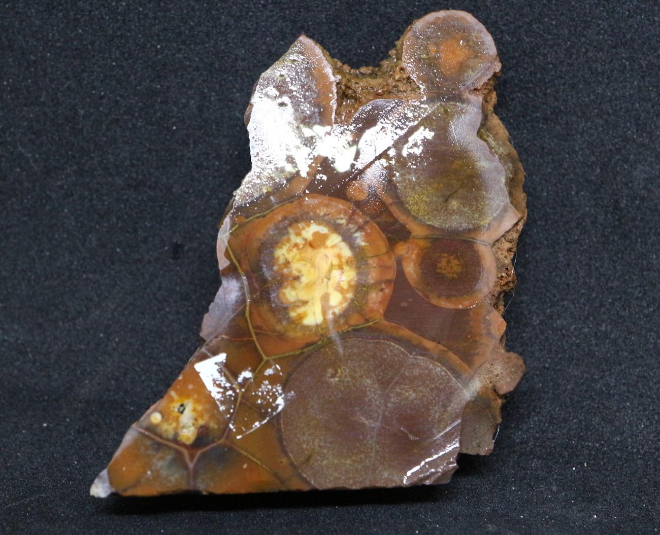 バードアイ ライオライト リオライト 流紋岩 15,7g BR001