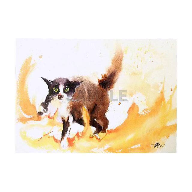 台湾ポストカード 水彩猫「無題2」