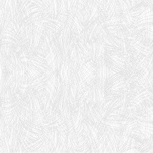 Shizuka Kanata / Snow / カメレオンレーベル