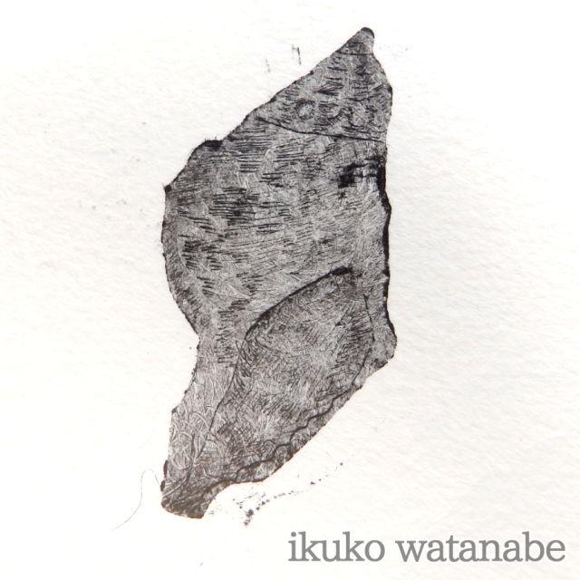 版画カード - 貝 - わたなべいくこ - no7-wat-04