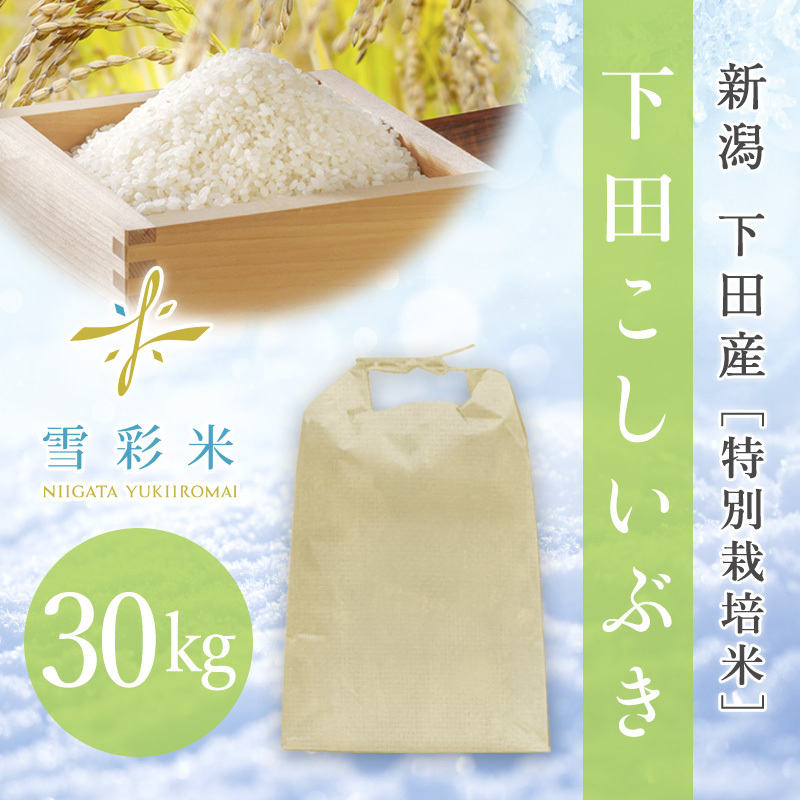 【雪彩米】下田産 特別栽培米 新米 令和2年産 下田こしいぶき 30kg