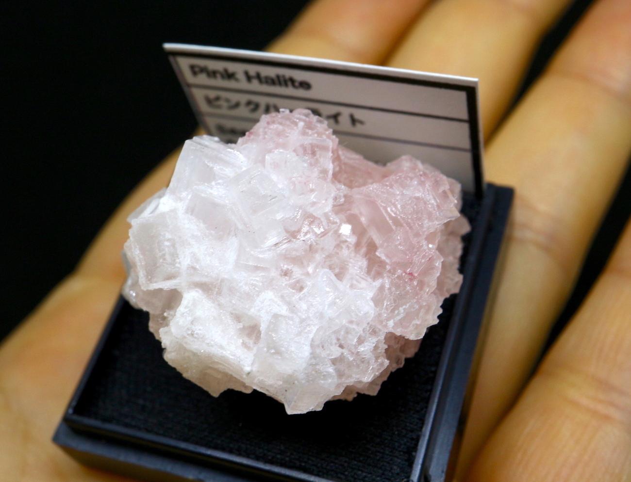 ピンクハーライト カリフォルニア産 ケース入り#2 岩塩 PH069 鉱物 天然石 浄化 パワーストーン