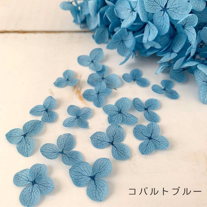 全18色|小さな花びら20枚