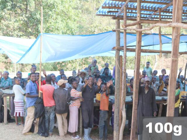 エチオピア | シダモ ベンサ ロギータCWS ウォッシュド | コーヒー豆100g