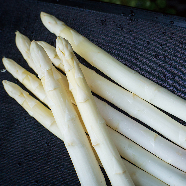 【2L・L】冬採りホワイトアスパラガス 「白い果実」500g