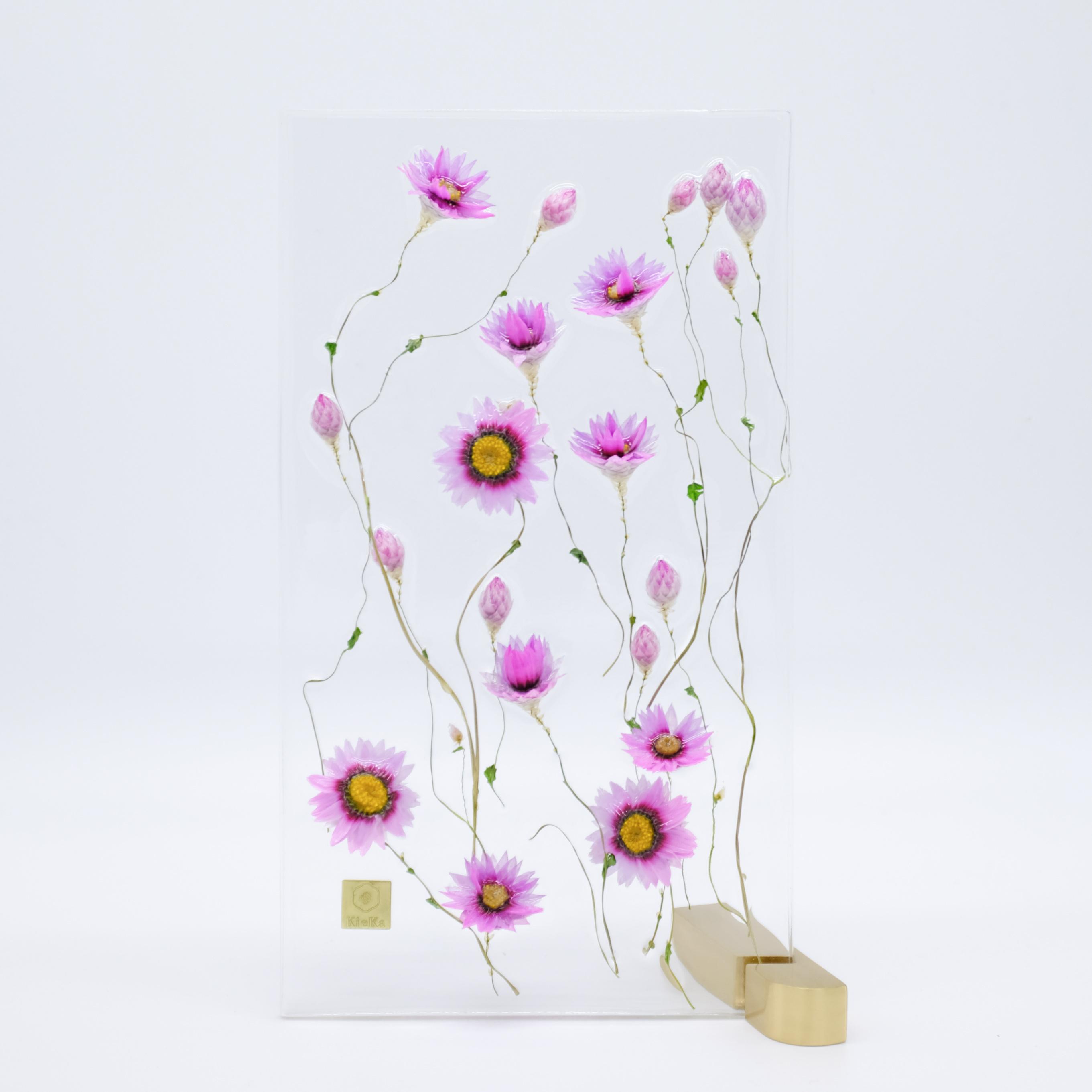 dried flower M ローダンセ 限定