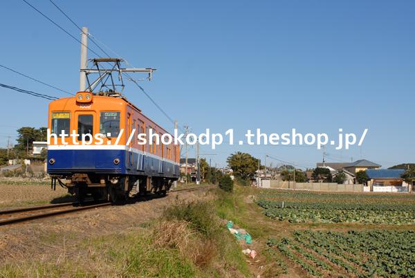 銚子電鉄1000形と畑DSC_0152-2