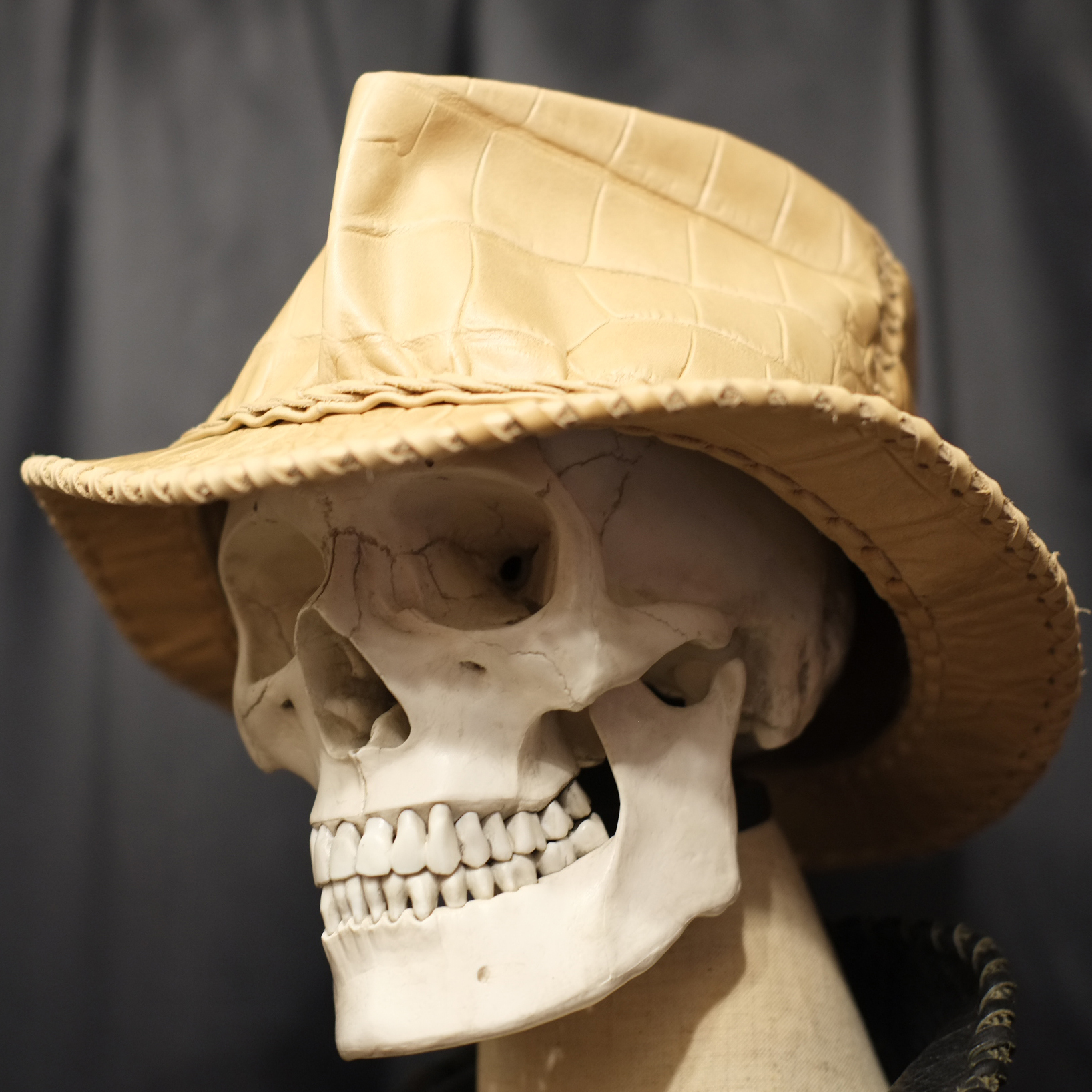 Wild Leather Hat クロコ・モルグ/L(約60cm)限定数1