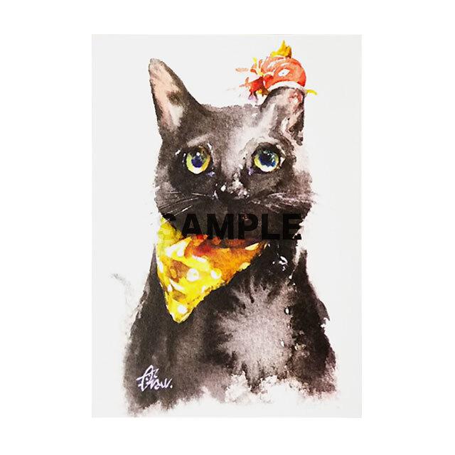 台湾ポストカード 水彩猫「吃猫的魚」