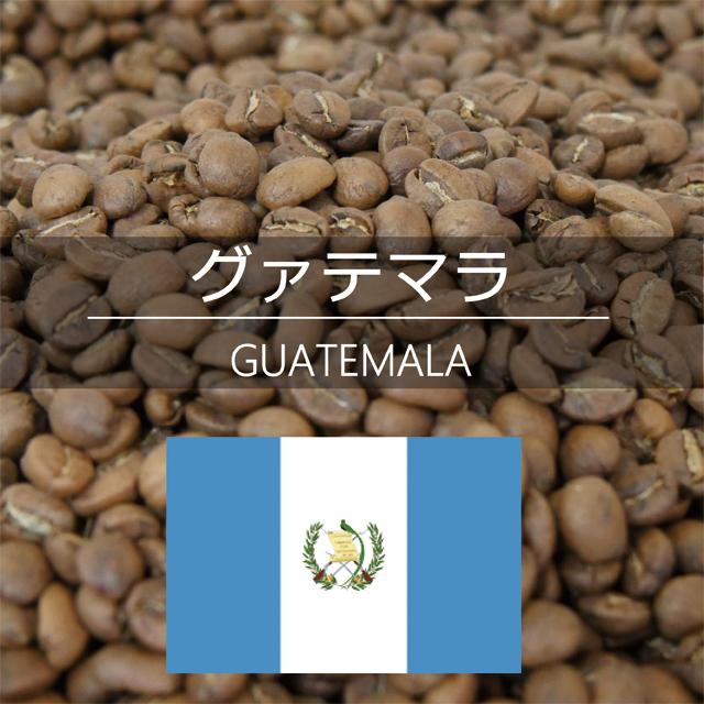 グァテマラ 500g