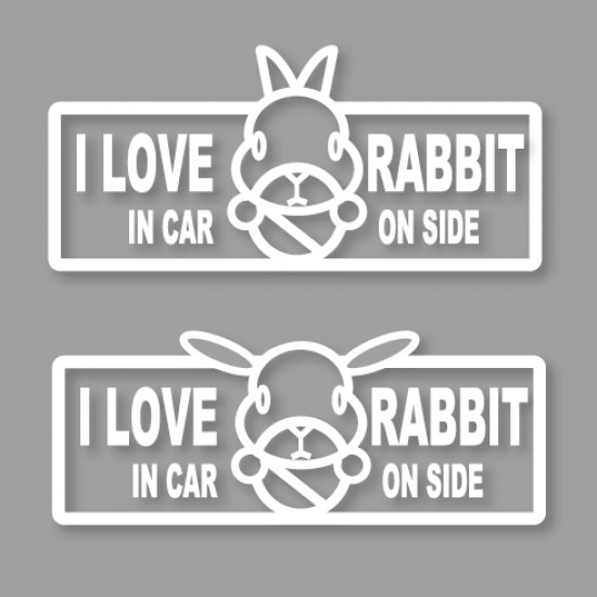 I LOVE RABBIT IN CAR ON SIDE