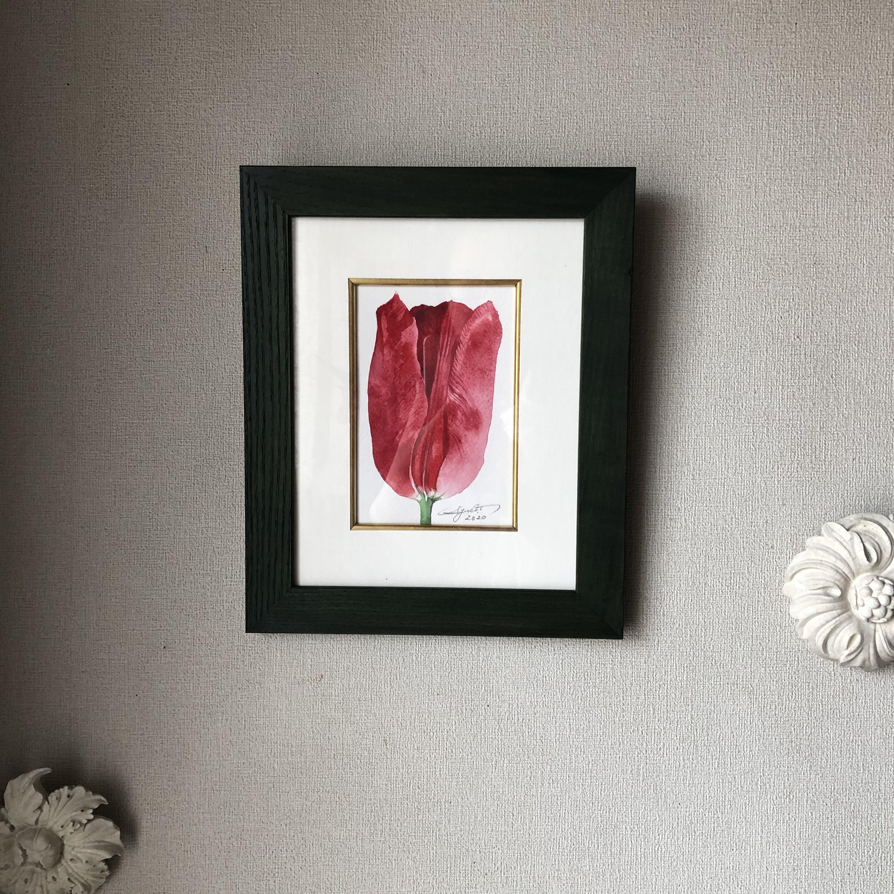 チューリップ「赤いチューリップ」はがきサイズ