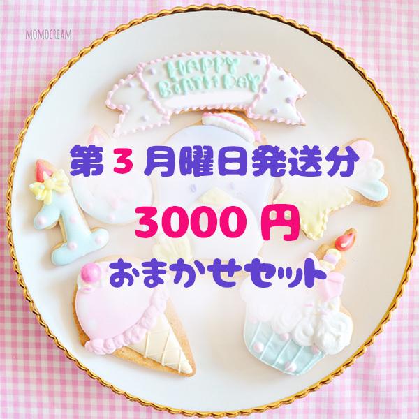 【第3月曜日発送分】3000円おまかせセット