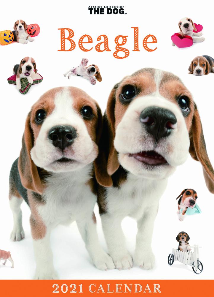 2021年 THE DOG卓上カレンダー ビーグル(卓上)