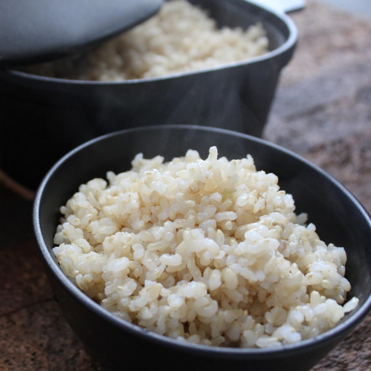 美し米 美山産コシヒカリ 玄米5 kg