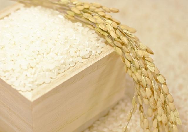 アスリート お米|25kg( 1kgあたり1,640円 5kg×5袋入)アスリート 食トレ ウエイト 部食 合宿所 お米