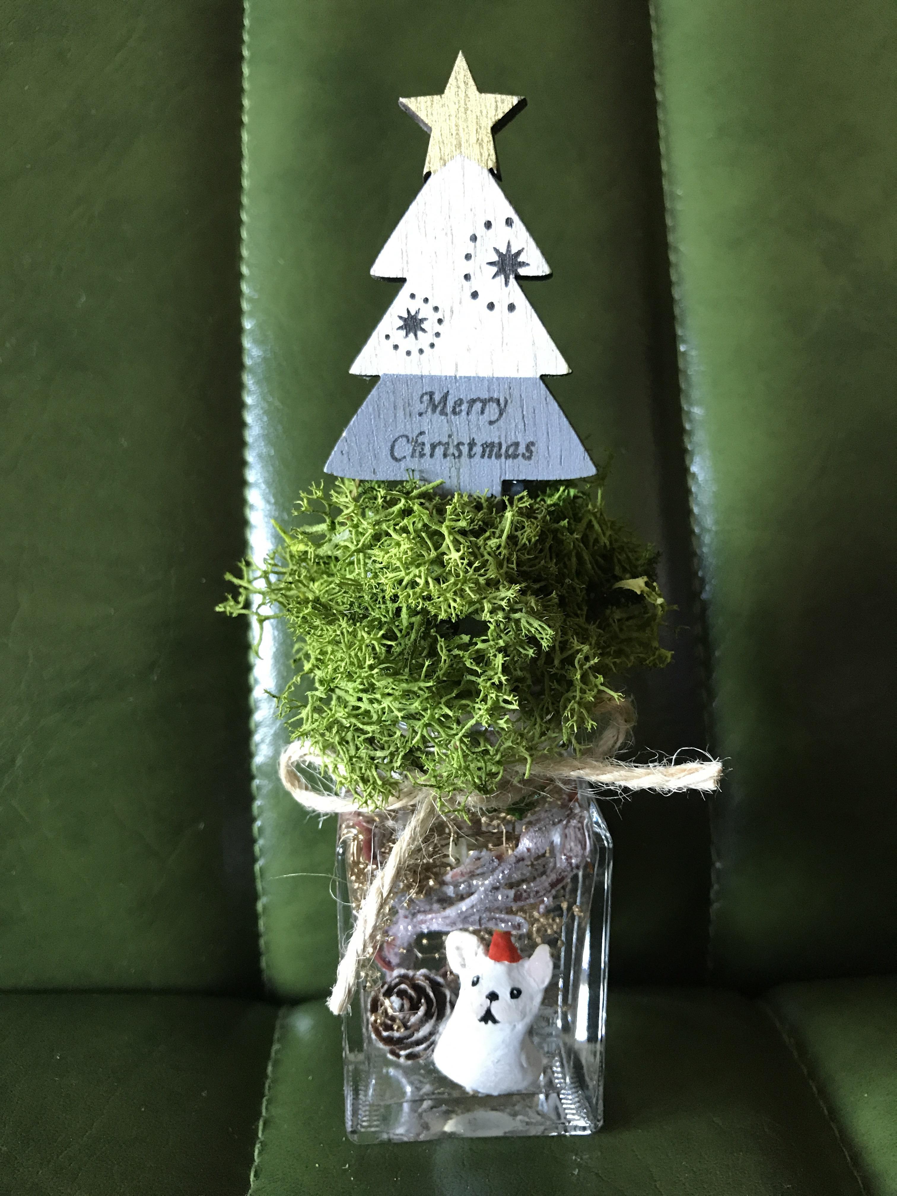 クリスマス  ハーバリウムBUHI(クリームグレーツリー)