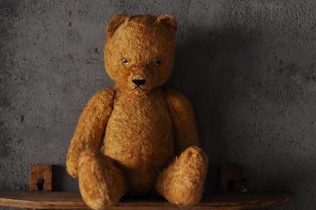 Teddy bear4