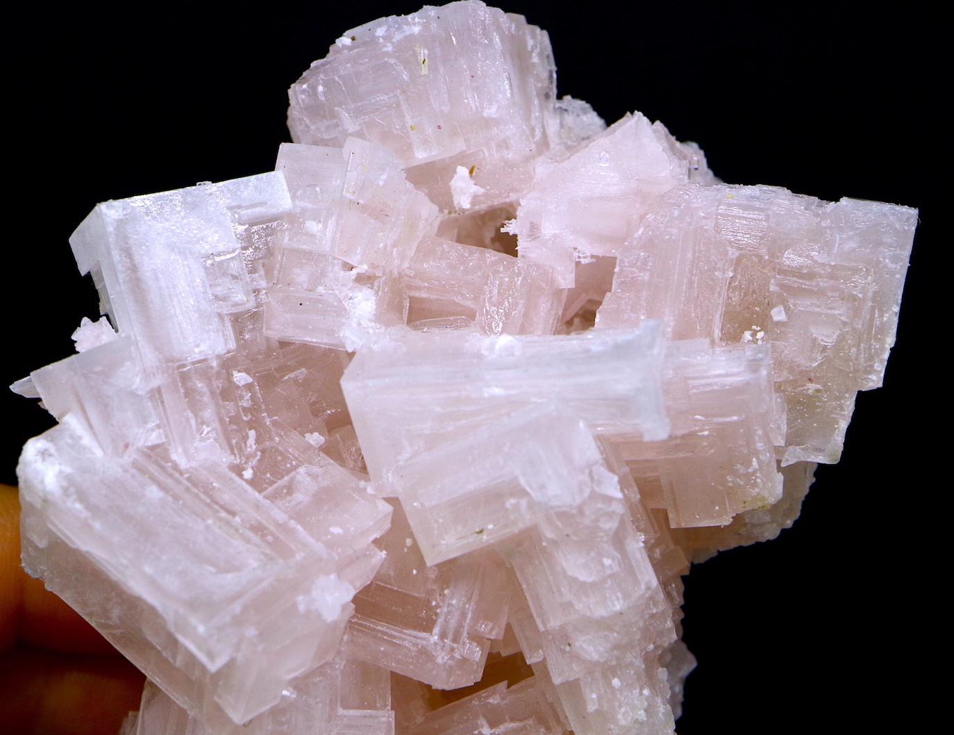 採れたて!ピンクハーライト カリフォルニア産 219,7g 岩塩 PH053