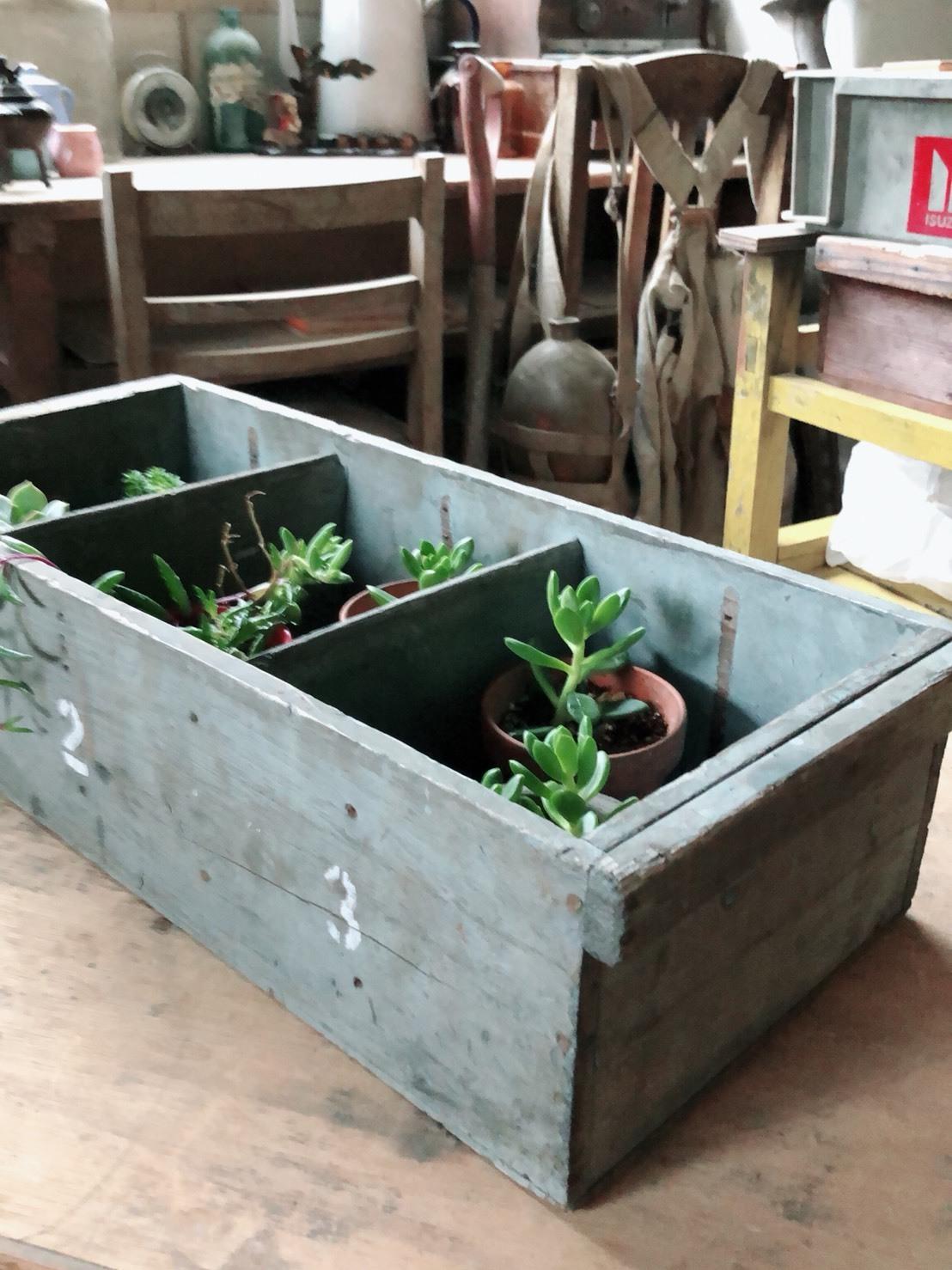 ガーデニングに使えるよ 木箱