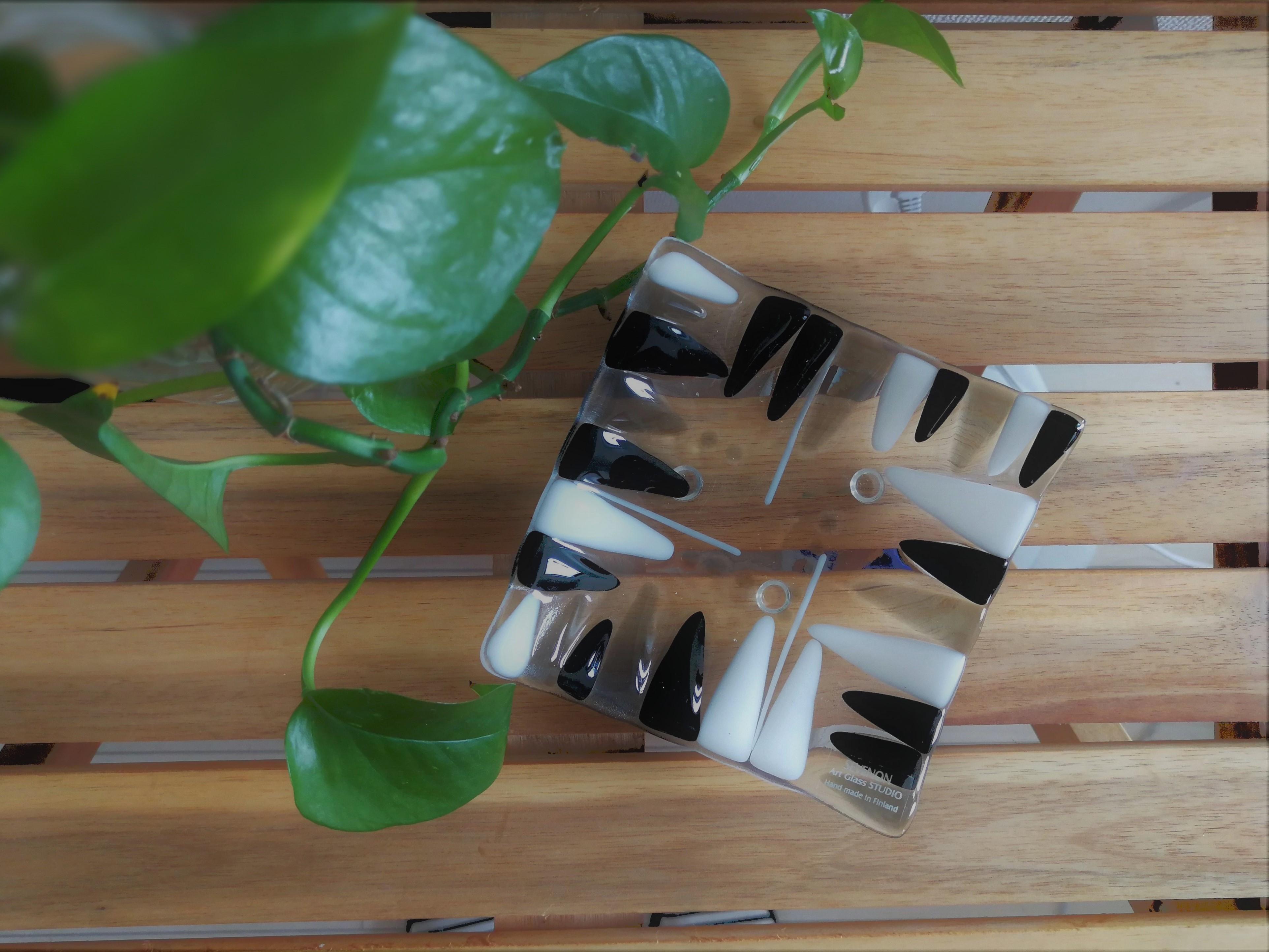 フィンランド製 ガラスデザインプレート  / SEVENON Art Glass STUDIO / 北欧の白樺