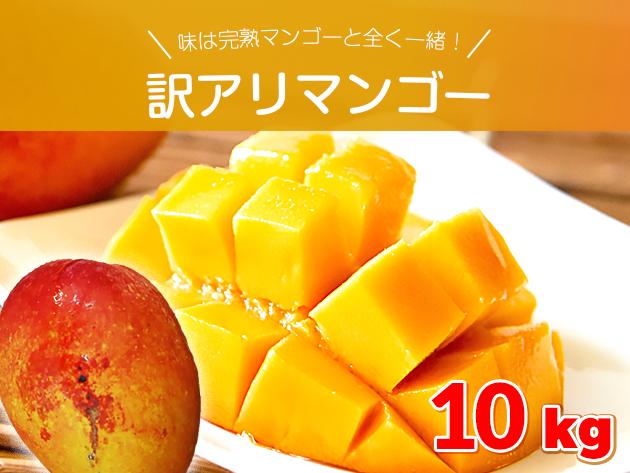 【お得用】訳アリ・ご自宅用完熟マンゴー 約10キロ 沖縄県産