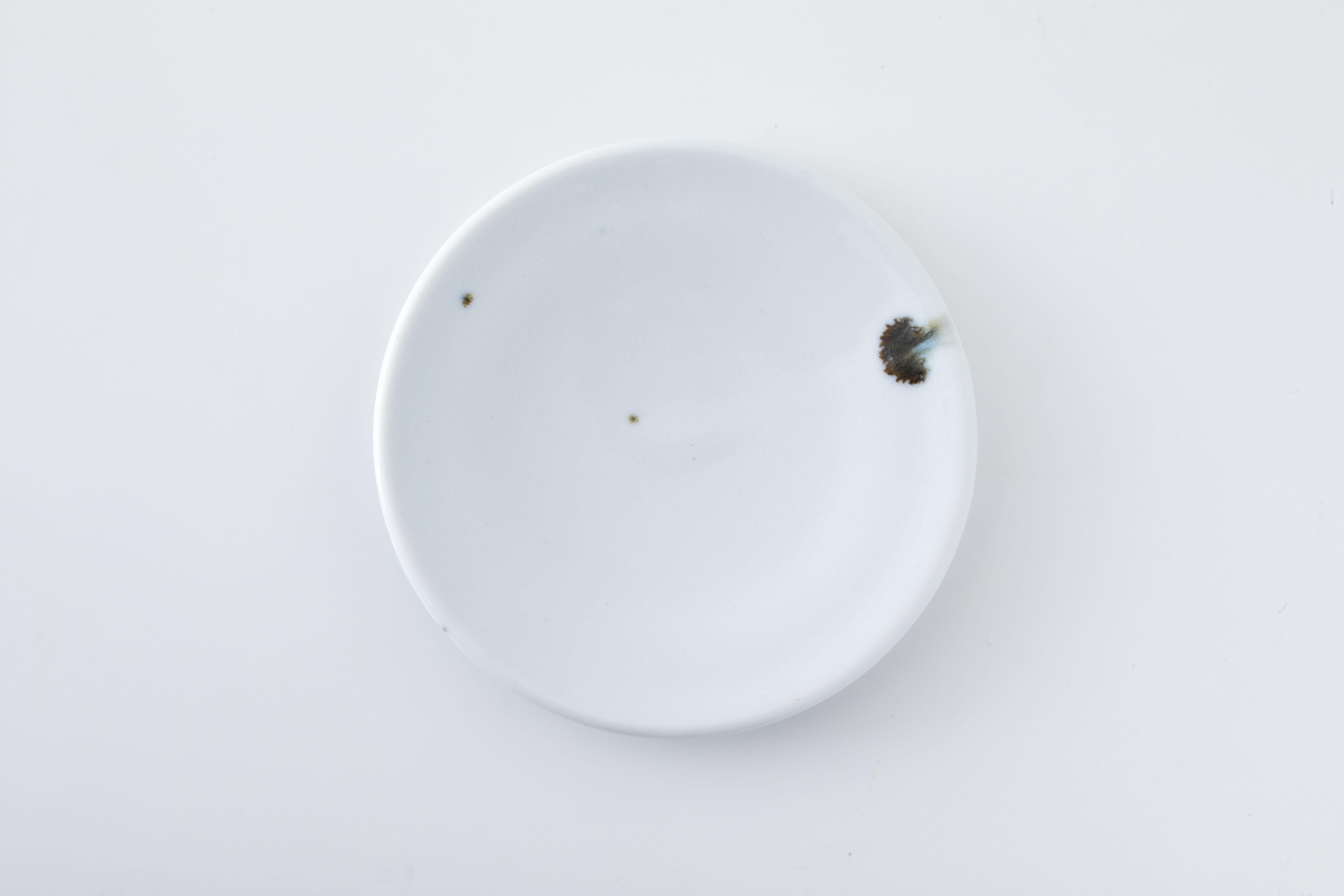 平皿:5寸(01) / 人見 和樹