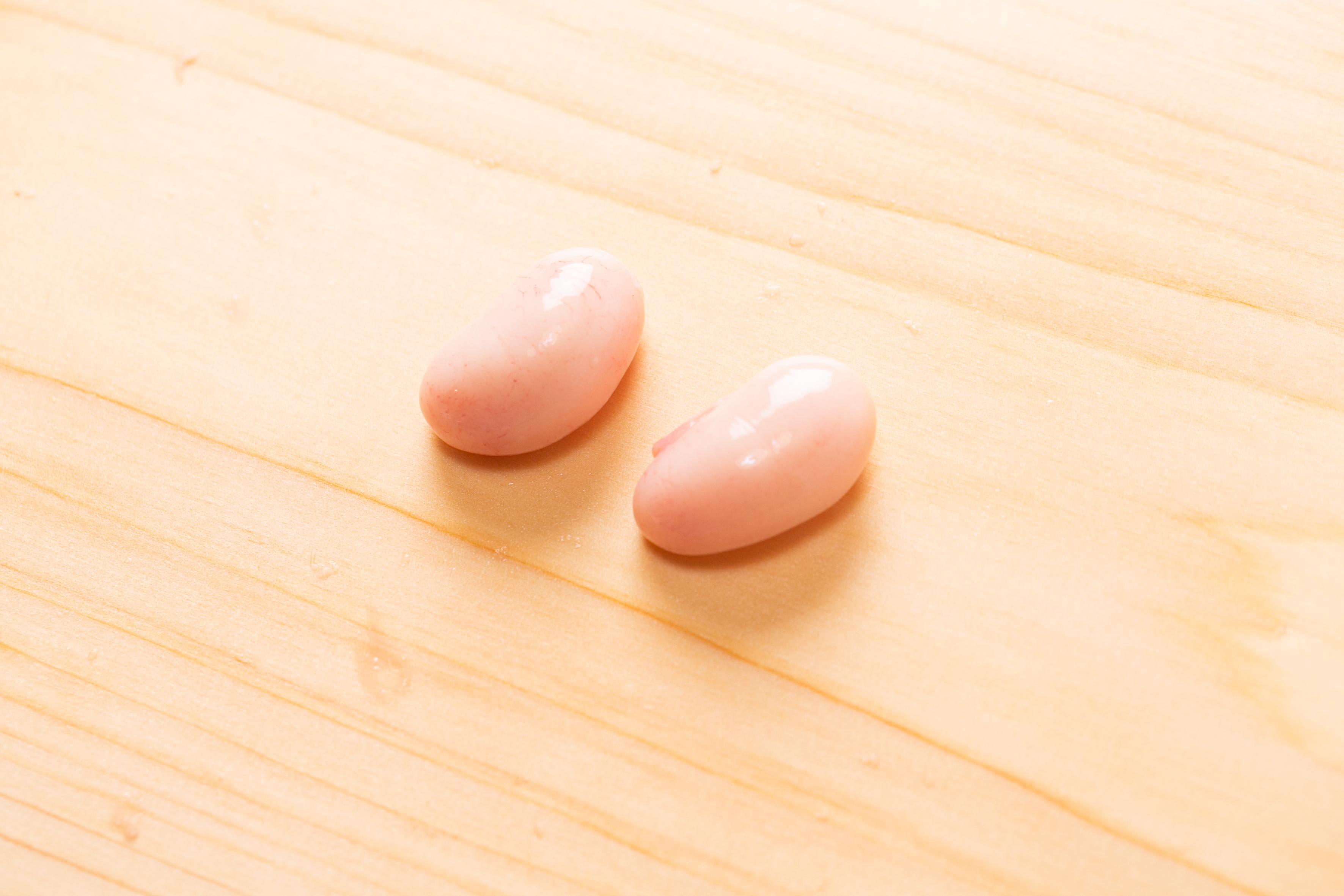 ☆希少な白子付き☆土佐ジロー肝セット(4種、6羽分)【冷凍】