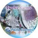 トゥエルブジェムズ[Twelve Gems]