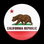 ゴーバッジ(ドーム)(CD0163 - FLAG CALIFORNIA) - 画像1