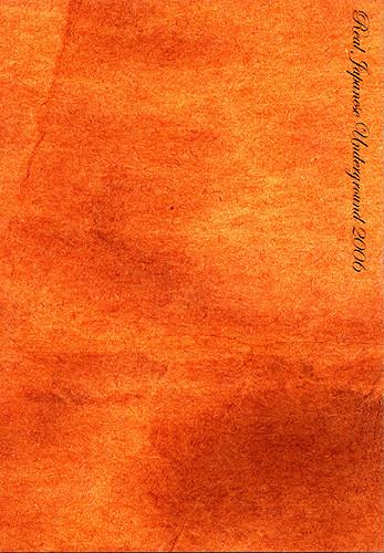 V.A. – Real Japanese Underground 2006 (3CDs)