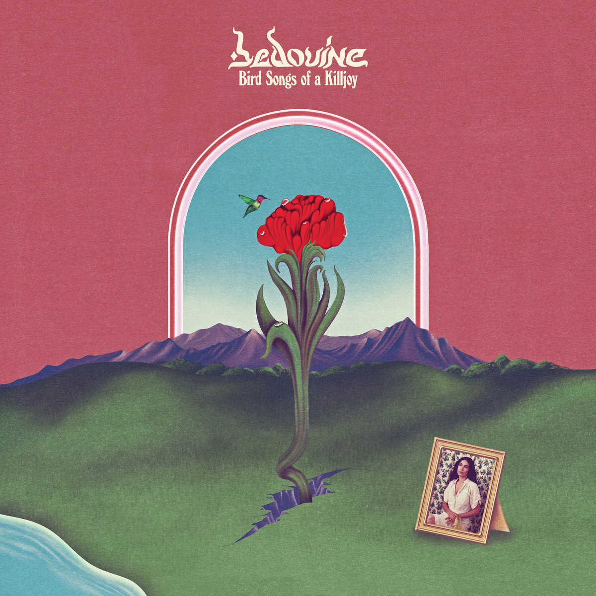 Bedouine / Bird Songs of a Killjoy(LP)