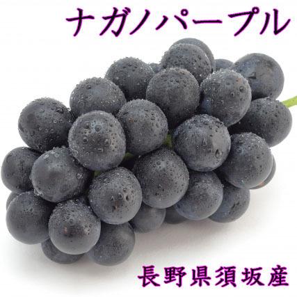 【 ナガノパープル 】 2kg 皮ごと食べられる 種なし 大粒!