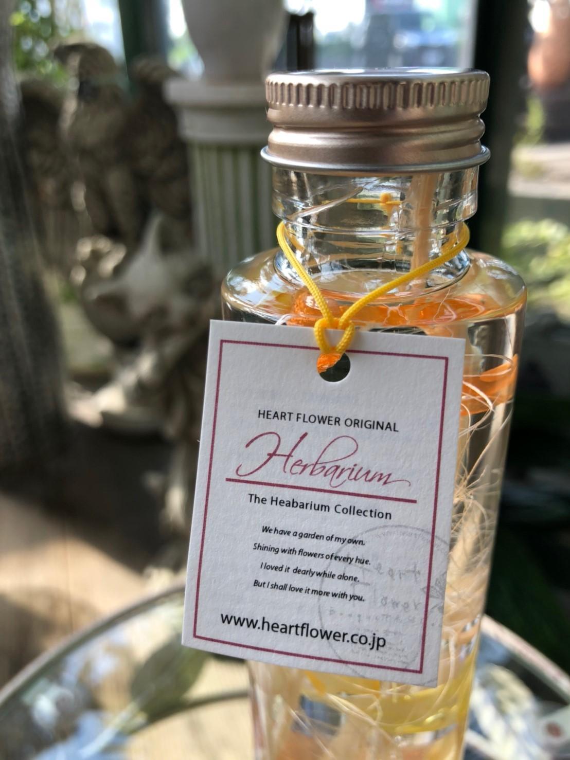 ハーバリウム アプリコット - made by Heartflower