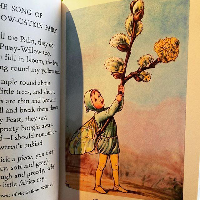 絵本「Flower Fairies of the Spring/Cicely Mary Barker」 - 画像2