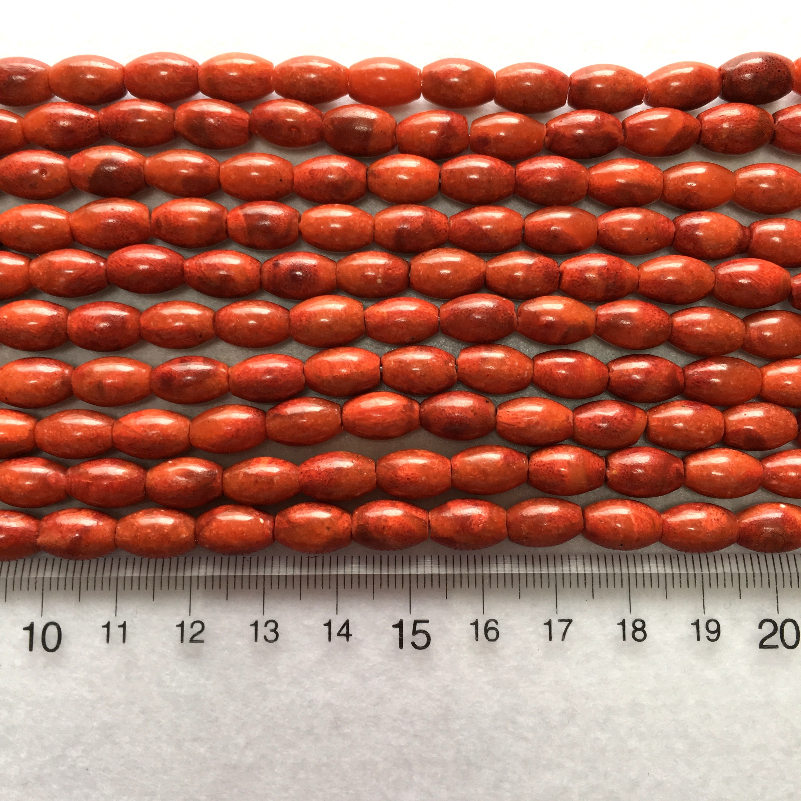 スポンジサンゴ バレル型 約10x7mm 連材【190162】