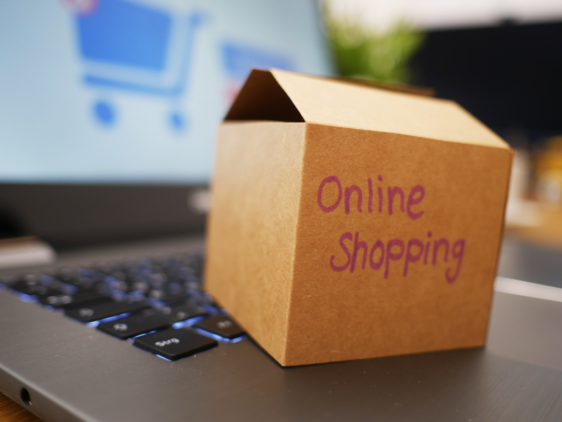 ネットショップ・ショッピングモール利用規約(BtoC、ゲスト+会員)