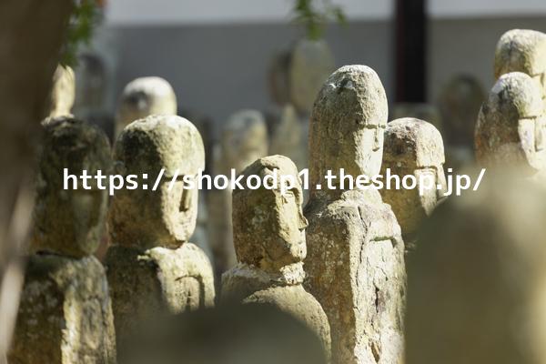 五百羅漢(北条石仏)174