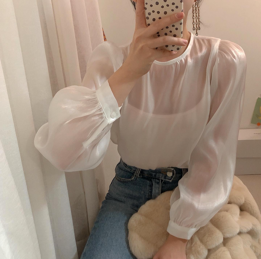 sheer muse blouse