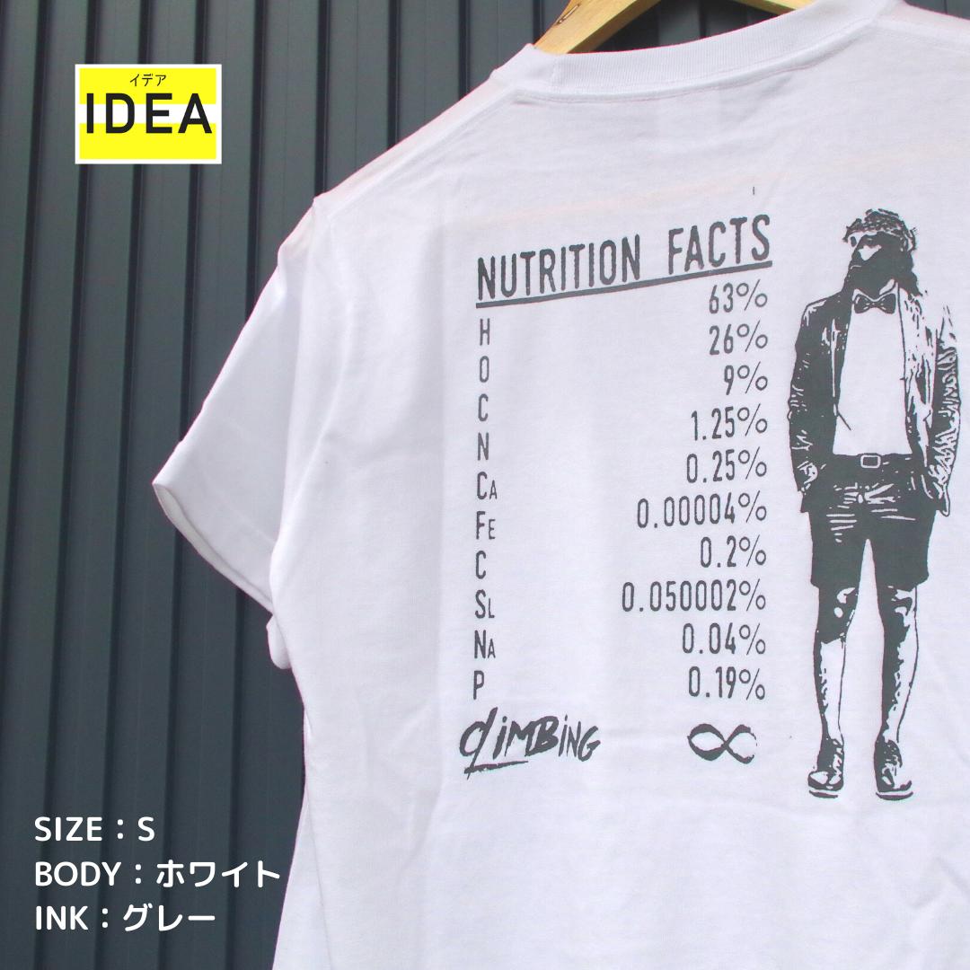 【IDEA】FACT