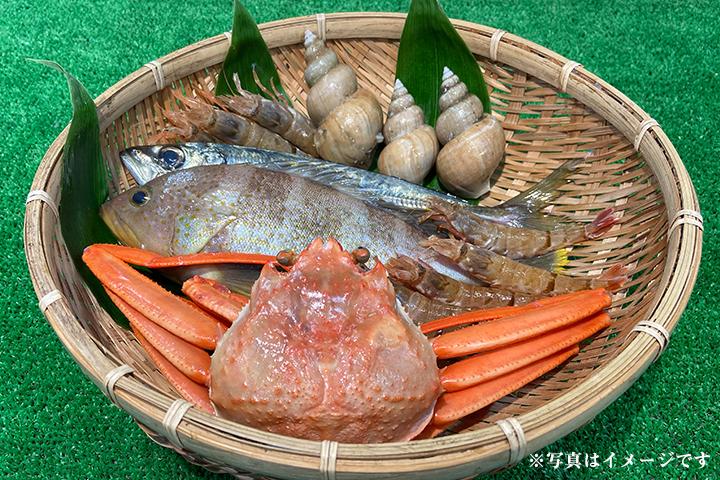 【そのままお届けコース】鳥取県より日本海の新鮮なお魚を定期便でお届け【送料込】※北海道沖縄を除く