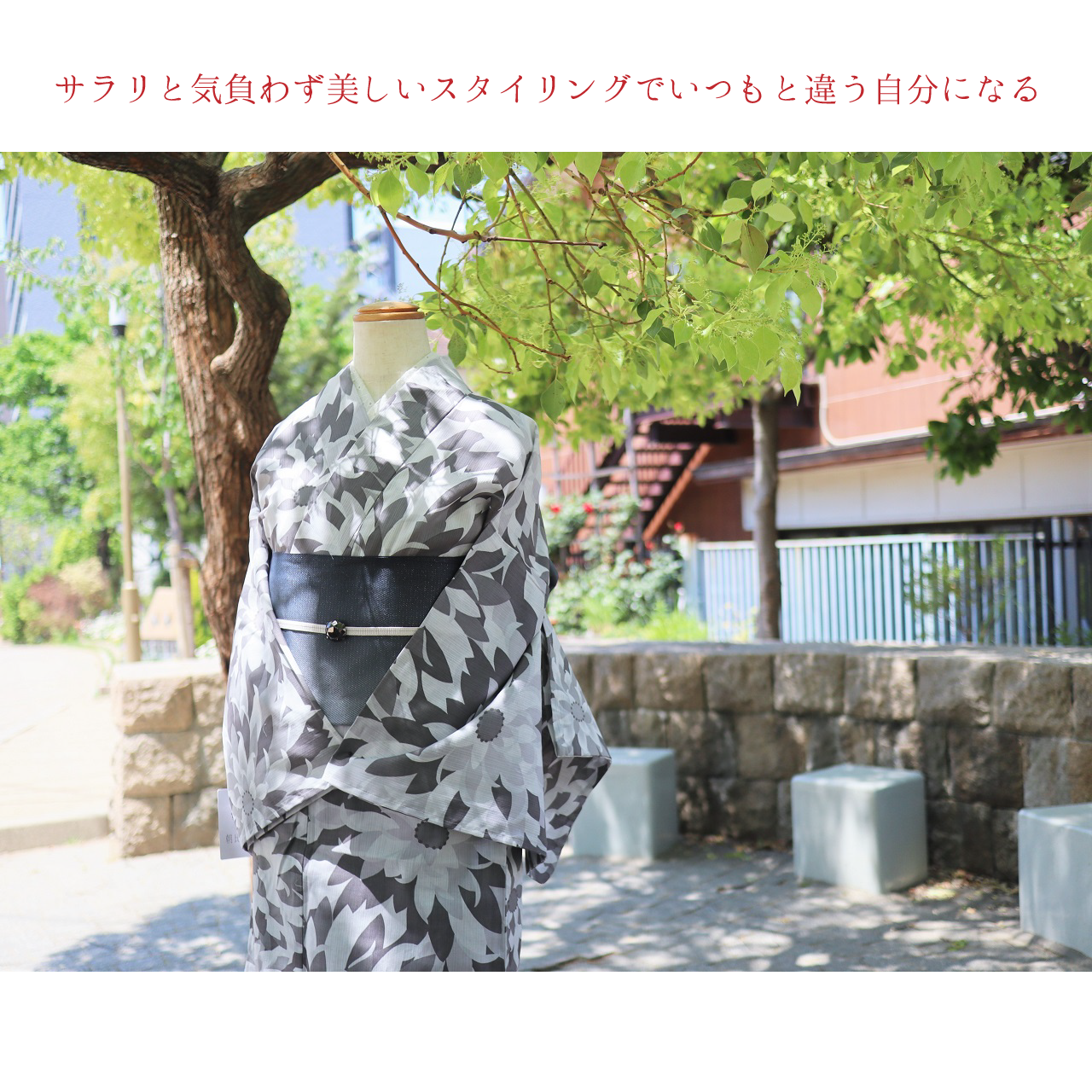 【浴衣】すぐ着られるお仕立て上がり むじな菊 モノトーンカラー