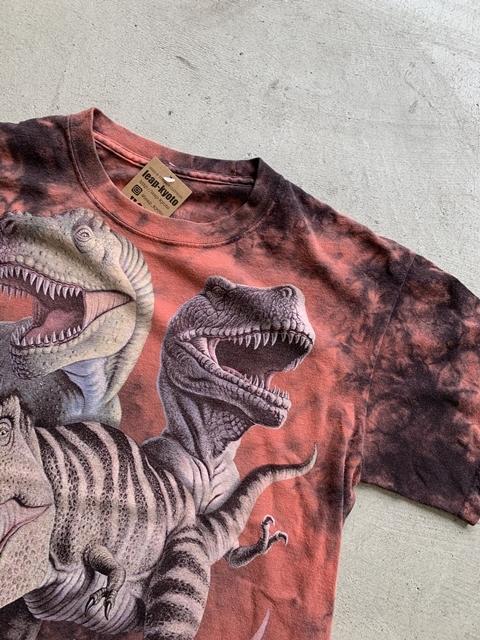 (4628)USED 恐竜 プリント Tシャツ 160cm