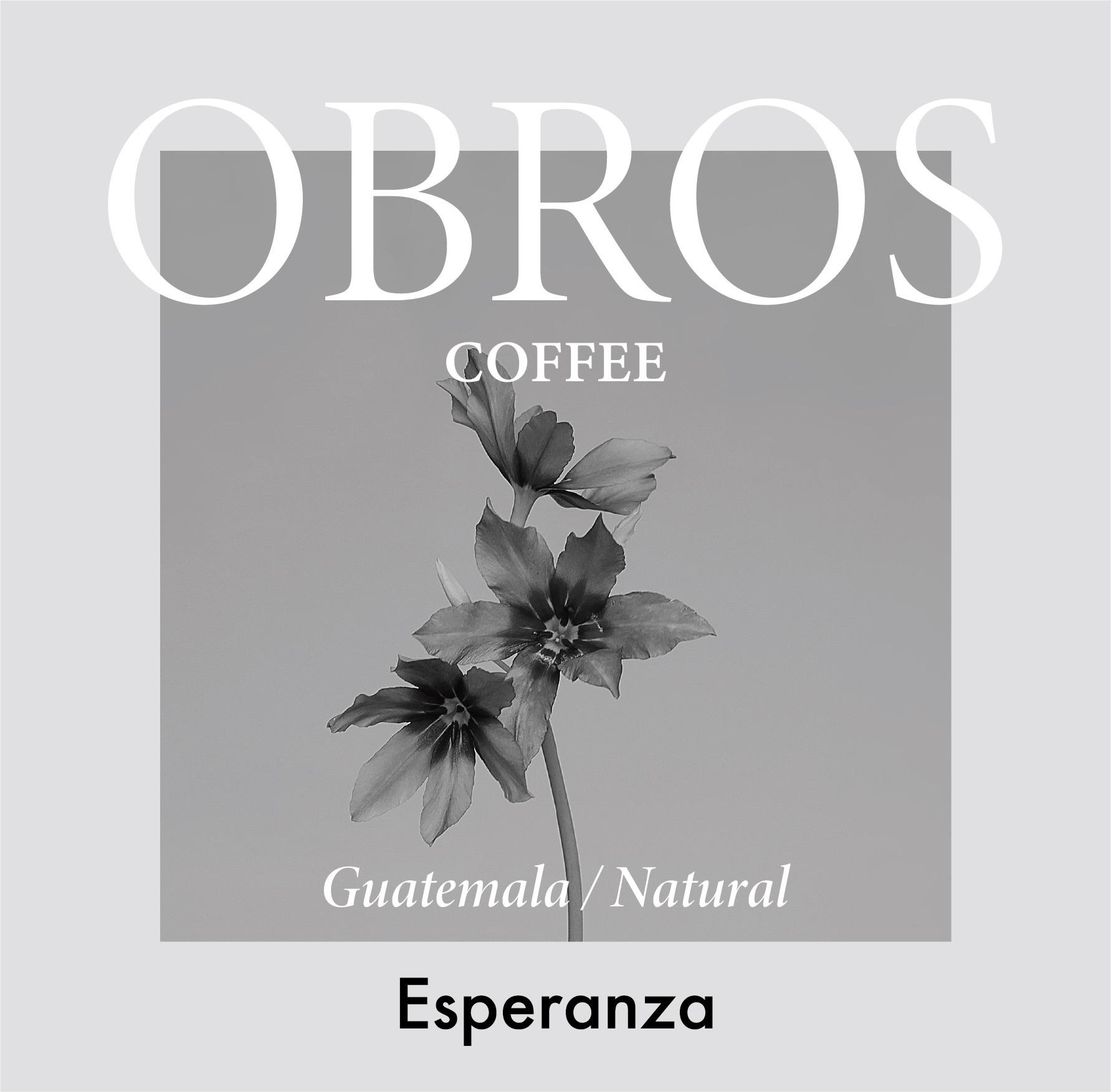 100g/Limited エスペランサ農園 /グアテマラ /ナチュラル