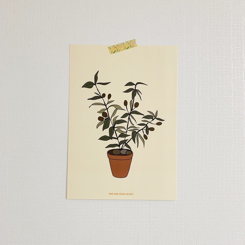 [OP-34] ポスター(オリーブの木)