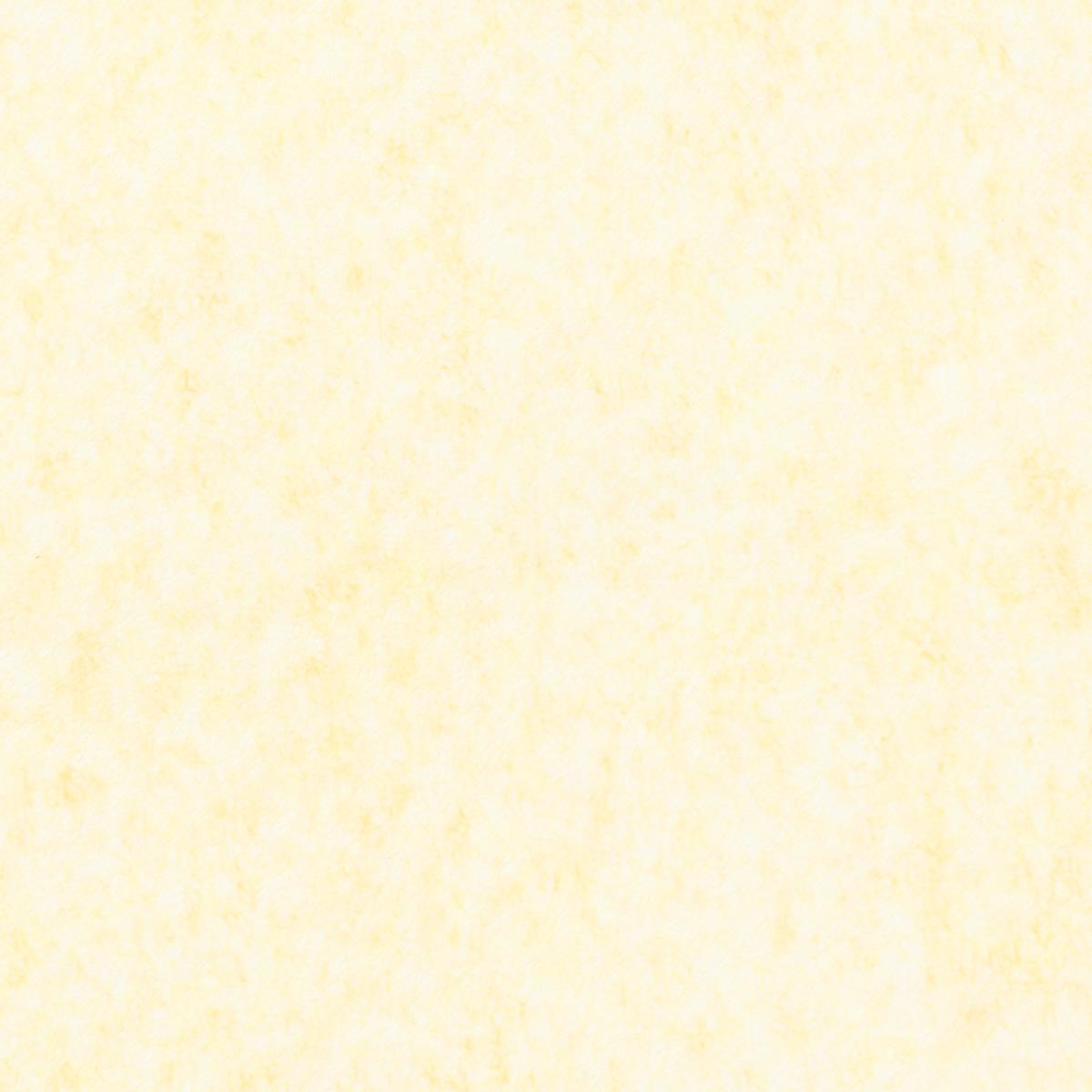 典具帖紙 ふぶき染 No.5