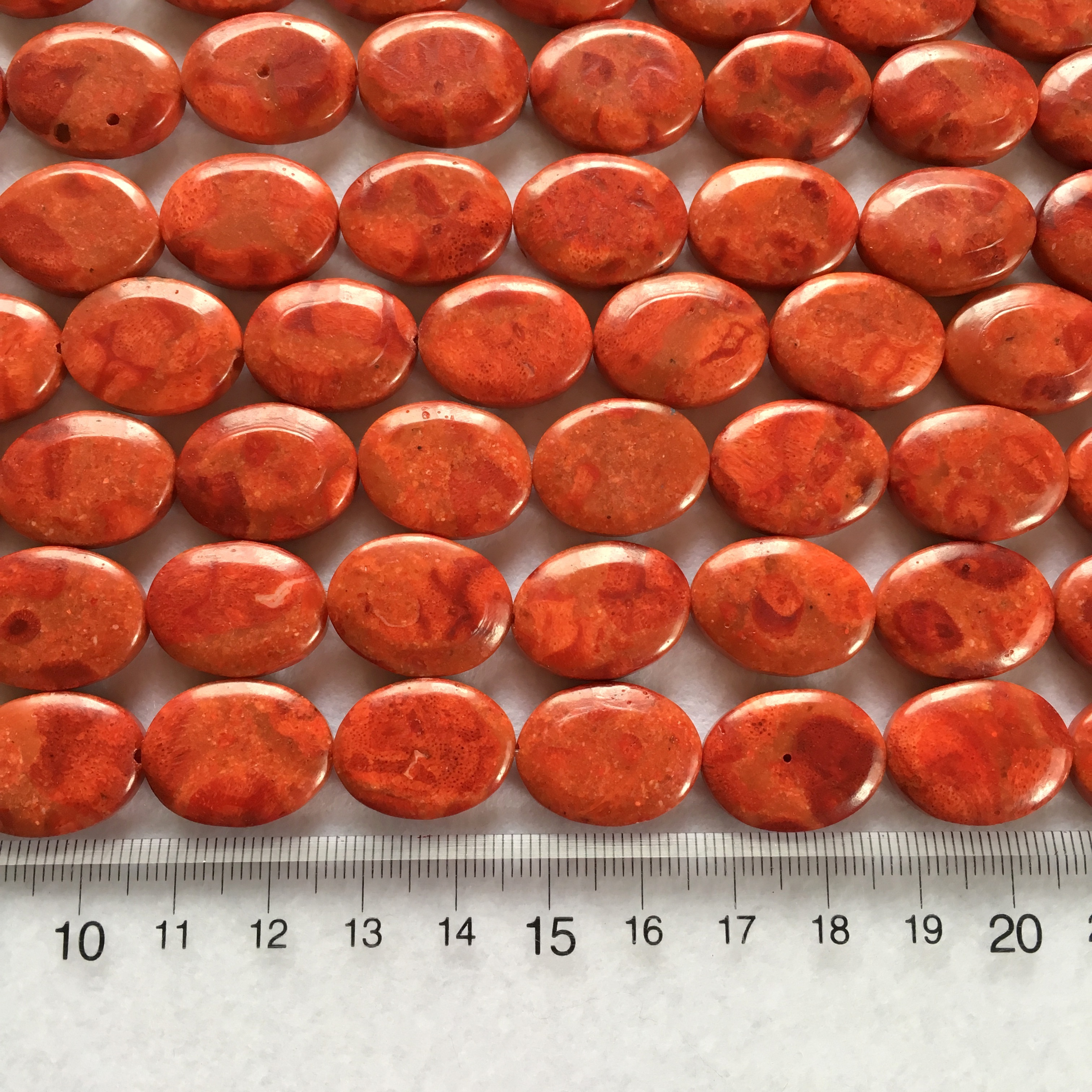 スポンジサンゴ オーバル型 約20x15mm 連材【190188】