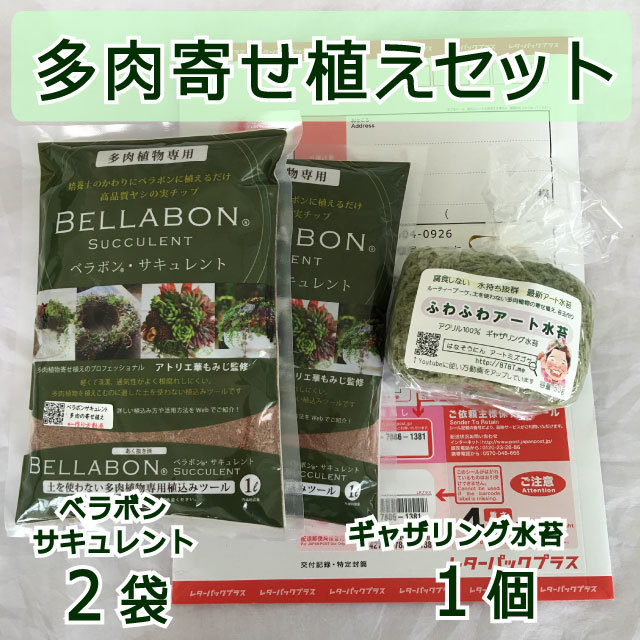 ギャザリング水苔1個&ベラボンサキュレント2袋 セット - 画像1
